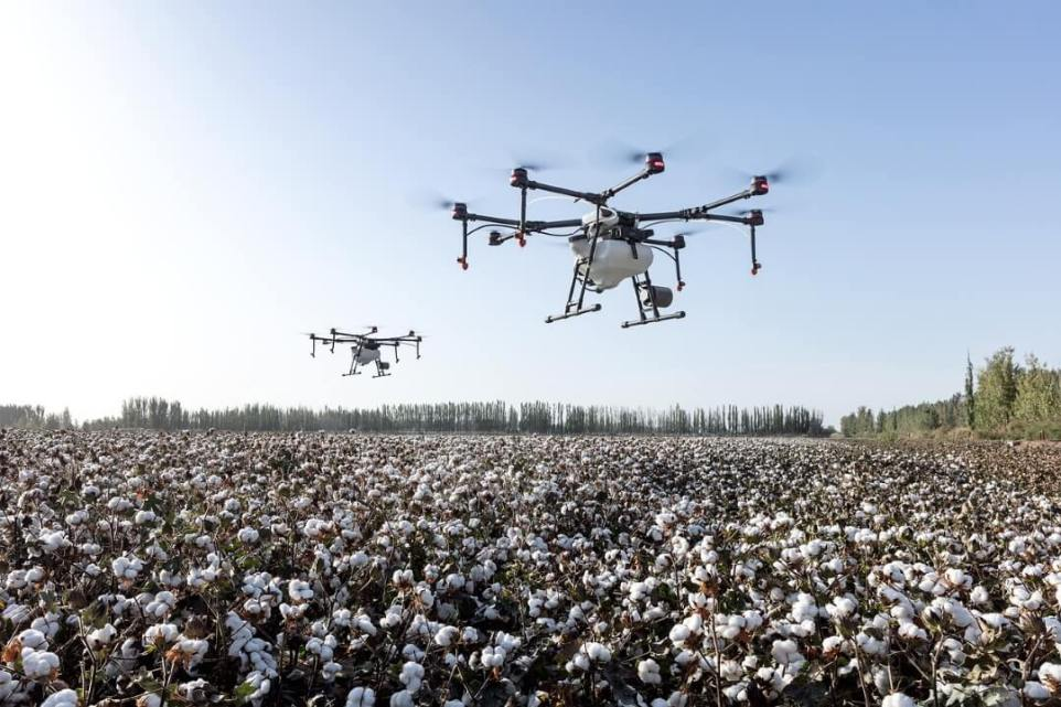 Smart Farming: IT Technology in Agriculture