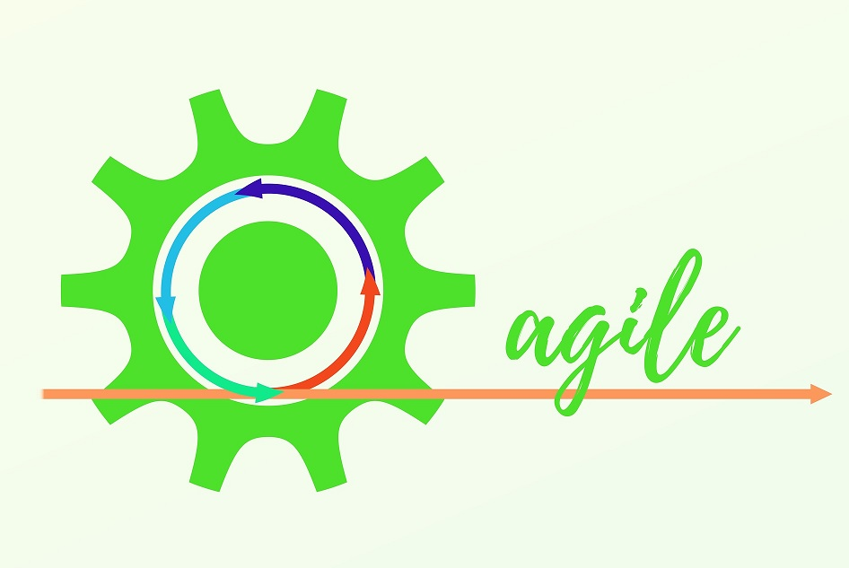 How to know if a company is actually going Agile?