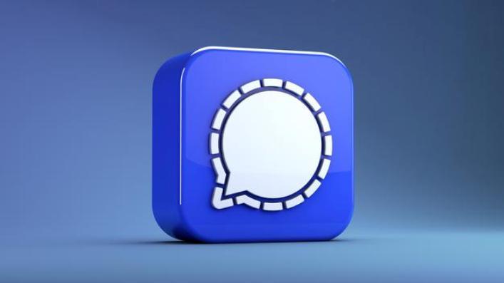 Does Signal app show online status?